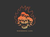 Wonderful Llife
