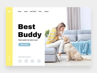 Best Buddy - Online shop for pet accessories