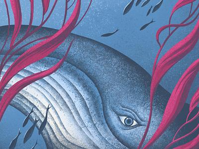 Whale in Kelp (detail) wildlife whales sea underwater marine life sealife kelp whale nature texture procreate colour illustrator illustration