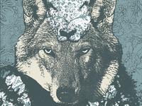 """Wolf Like Me..."" WIP"