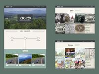 Rio29 Website Design