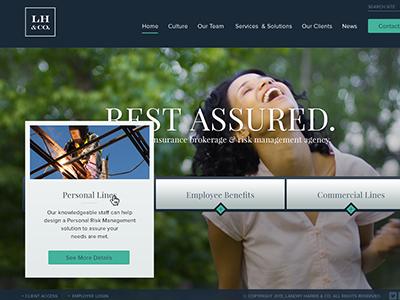 Insurance Agency  blue teal full screen web web design hover playfair proxima girl