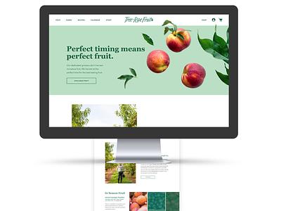 Tree Ripe Fruit Homepage Design branding web design