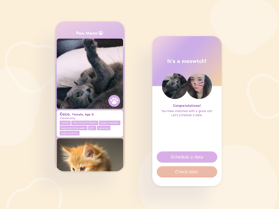 Rescued Cat Matchmaker home meeting pet care love meow pet matchingapp matchmaker hcd uiux mobile ui paw shelter rescue animal kitty cat mobile app match