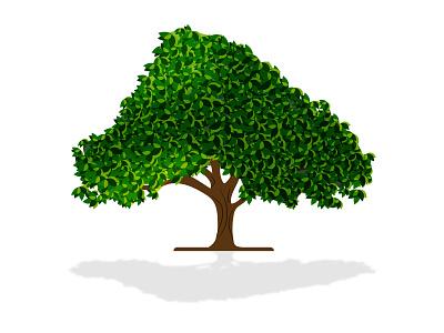 Realistic Tree realistic tree flat drawing tree