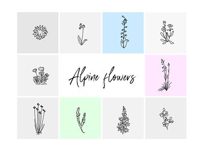 Alpine flowers minimalistic design minimalism wacom intuos vector illustrator illustration alpine flowers alps flowers free vector floral illustration flowers
