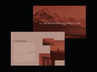 Schwinn Brand Identity | Website