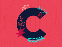 C for 36 Days of Type 05