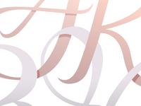 Logotype Detail