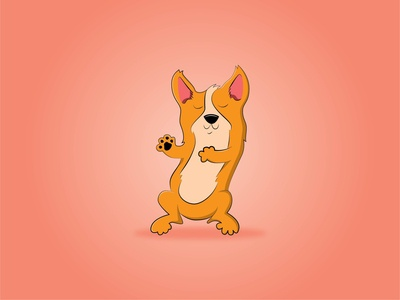 Corgi Illustration adobe illustrator illustration