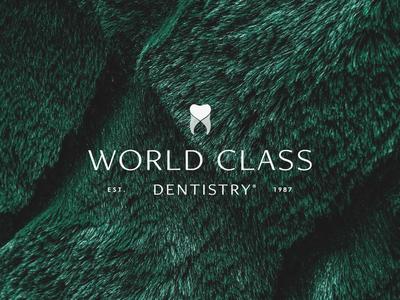 World Class Dentistry   Logo Design icon love tooth dentistry class world sarasota dentist identity design logo