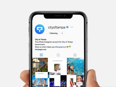 City Of Tampa   Social Media Icon design identity tampa branding city mark logo design icon