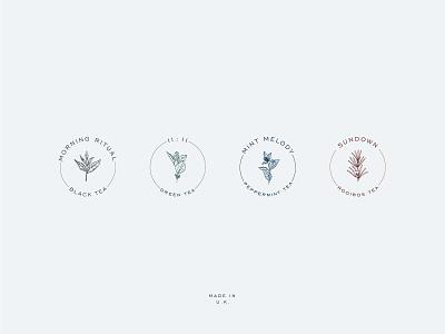 Tea&Me vector color art label packaging branding logo design illustration typography
