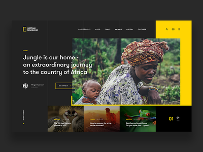 National Geographic - Website Concept geographic national travel animal nature web concept ui ux webdesign