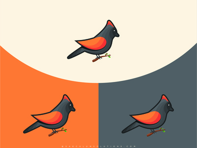Bird Illustration | Graphic Design | Branding