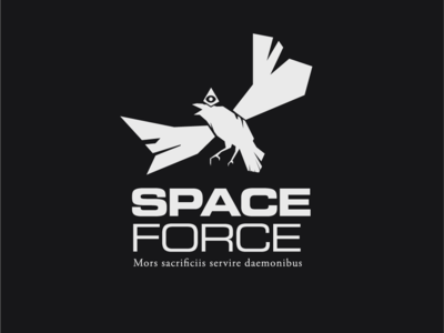 Logo a day 019 - Space Force