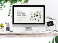 Web-design for the online seeds store