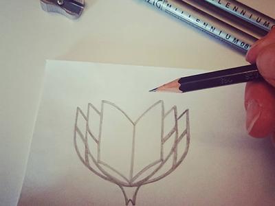 Fynbos sketch
