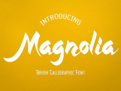 Magnolia Callygraphic Font magazine beauty design typography fashion clothing apparel branding poster graffiti calligraphic logotype modern brush font handdrawn callygraphy lettering scriptfont typeface brushfont