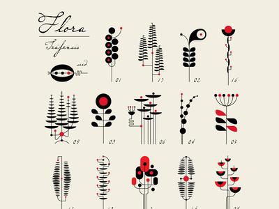 FLORA Series: garden