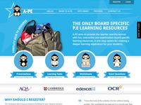 Website, Illustrations & Branding for A-PE