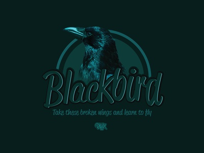 "Blackbird ""Take these broken wings and learn to fly"""