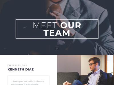Meet Our Team Website Design By Mahmudparvez