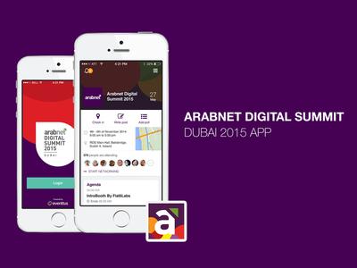 Arabnet digital summit dubai 2015