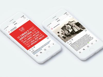 Redshed Social Media social media graphics social media design instagram