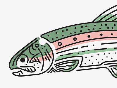 Rainbow Trout line rainbow fish trout
