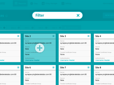 Access Manager - Web Application ux ui web application