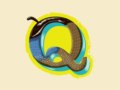 36 Days of Type -- Q for Quail feathers birds blue branding vector logo typography animal alphabet letter q lettering 36daysoftype illustration