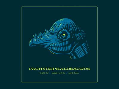 Dino Series: Domehead pachycephalosaurus dinosaurs design logo typography drawing vector branding illustration