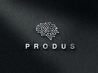 Produs a logo for smart company