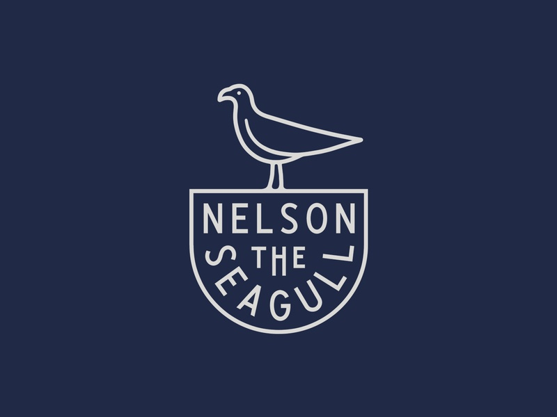Nelson The Seagull