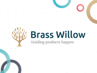 Brass Willow - agile branding