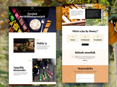 Webpage for a small startup which made flavoured honey elementor website design startup sales page ui ux webdesign
