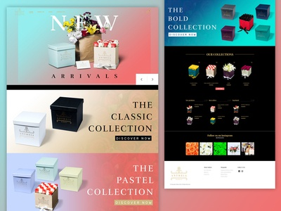 Website Landing Page | UI/UX Design | E-commerce Website