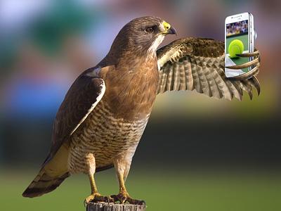 Samsung Hawkeye [Wimbledon Special] samsung hawkeye technology s4 zoom wimbledon tennis photo manipulation