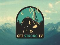GSTV Logo Proposal