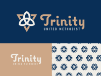 SEPOP 3/3 - Trinity Logo