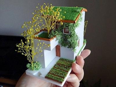 Mojyahouse Model mojyahouse plantshouse tinyhouse