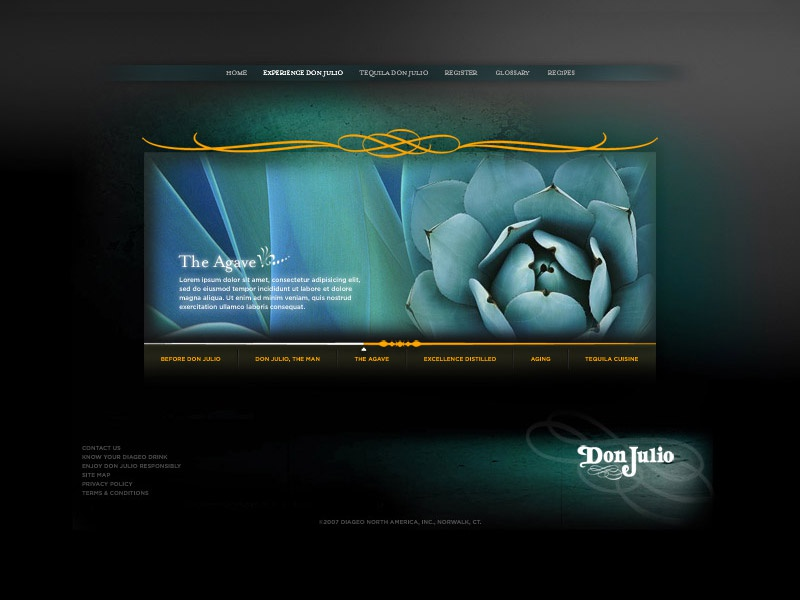 Don Julio web 1 of 3 agave dark ui ux tequila site web julio don