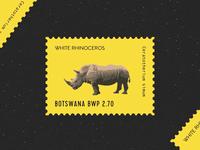 Happy National Rhino Day!