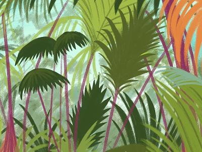 Valle De Mai digital plants rain forest jungle illustration