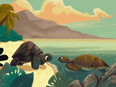 The Tortoise And The Turtle digital sea tortoise turtle beach illustration