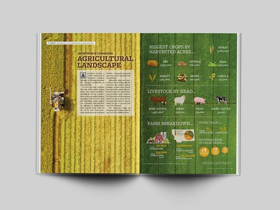 Agriculture Infographic magazine design agriculture editorial design layout design infographic design infographic