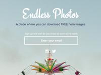 Endless Photos