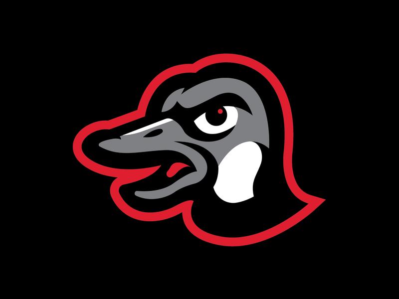 Texas Edge - Big Fly little league victory design branding bat logo baseball sports goose