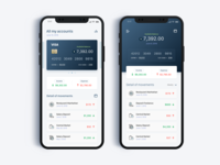 Bank Finance Concept (Banking) - Daily UI Challenge #7